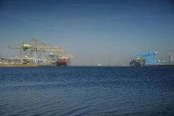 Automated STS Cranes at MVII Rotterdam fully equipped with BTG Positioning Systems